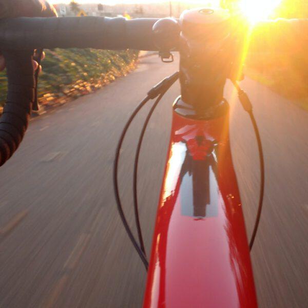 Holland Radreisen bei Happy Cycling Holidays buchen