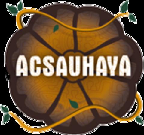 Was ist ein Ayahuasca-Retreat?